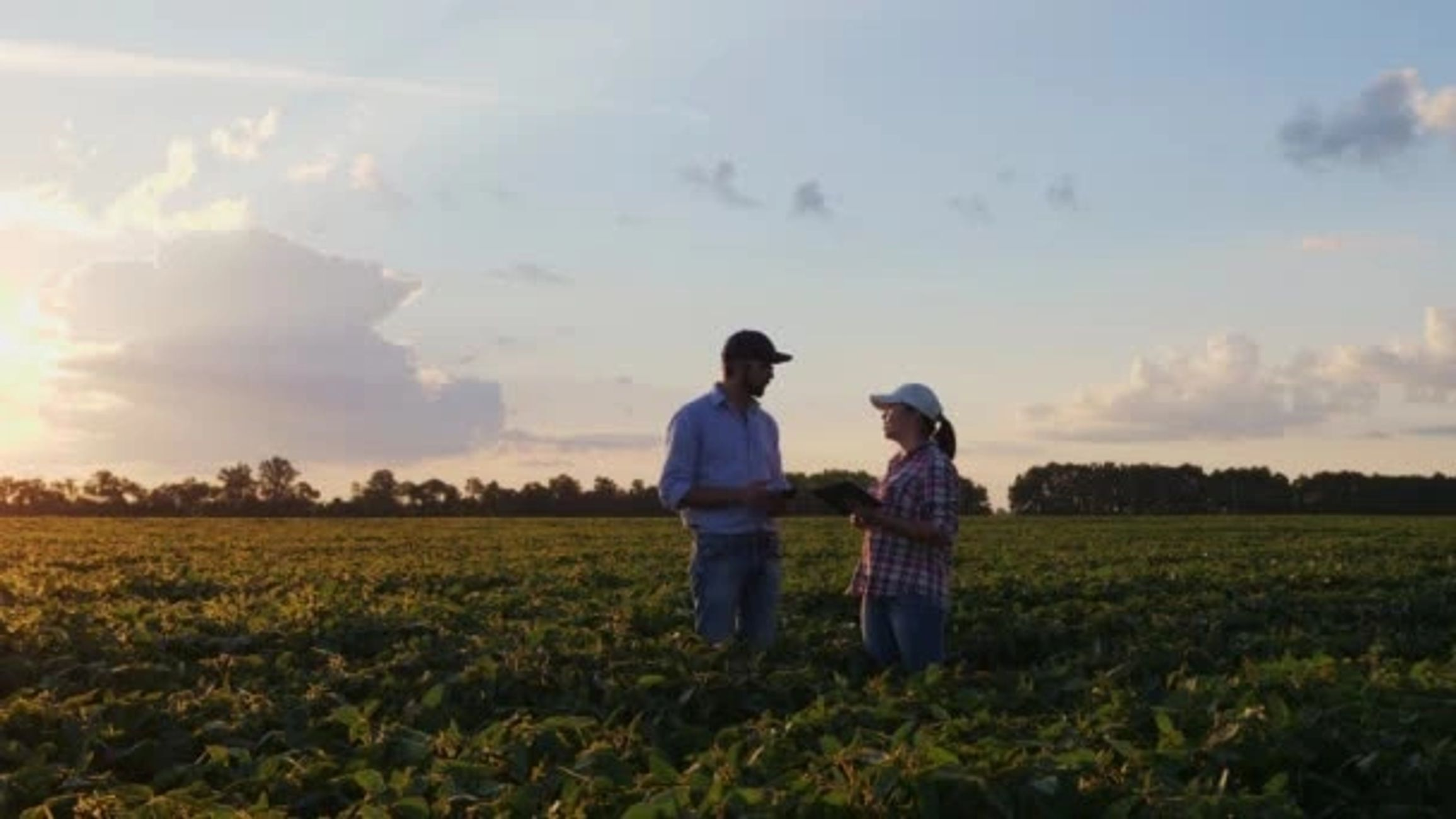 cropland-homepageimage