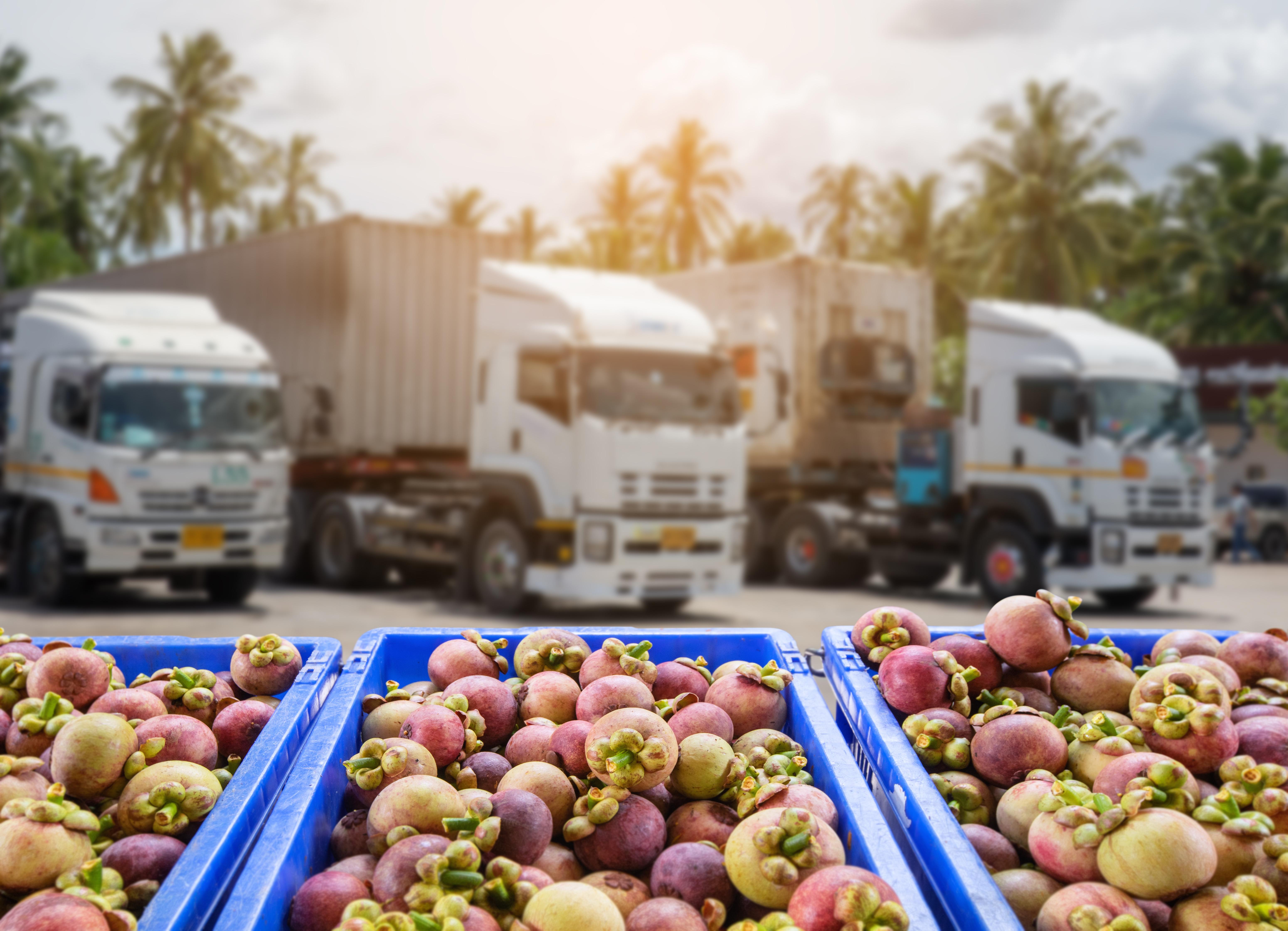 produce-dist-truckinbackground